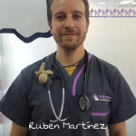 RUBÉN MARTÍNEZ <BR />Licenciado en Medicina Veterinaria en 2008 por la Universidad Complutense de Madrid. De 2009 a 2010 realizó el internado oficial del Colegio Europeo de Medicina Interna (ECVIM) en la Clínica Veterinaria Gran Sasso de Milán (centro de referencia en diagnóstico ecográfico, cardiología y cardiología intervencionista). Miembro de AVEPA y GECAR. Desde entonces dedica su actividad como especialista en cardio-respiratorio y diagnóstico ecográfico colaborando con distintas clínicas, el hospital veterinario de la universidad Alfonso X El Sabio y de la UCM.    Comienza a trabajar en el Hospital Veterinario Estoril en junio de 2017 siendo responsable del servicio  de cardiologia y respiratorio del centro.